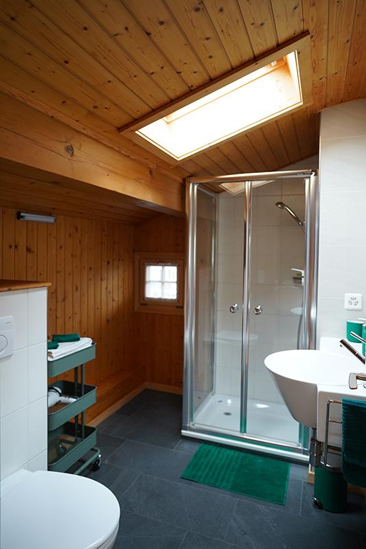 Badezimmer mit Dachfenster